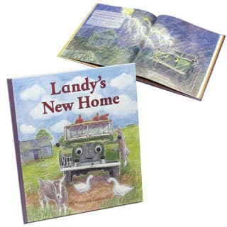 LANDY'S  NEW HOME CHILDRENS BOOK