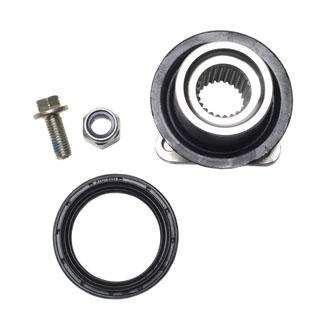 Flange & Seal Kit Diff Pinion P38a