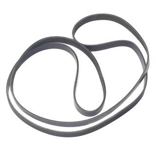 Primary Belt 4.4/4.2L V8 L320