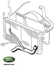 Hose Radiator Bottom RRC 3.9 V-8