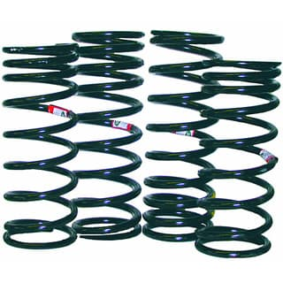 COIL SPRING SET GENUINE D90 HEAVY DUTY
