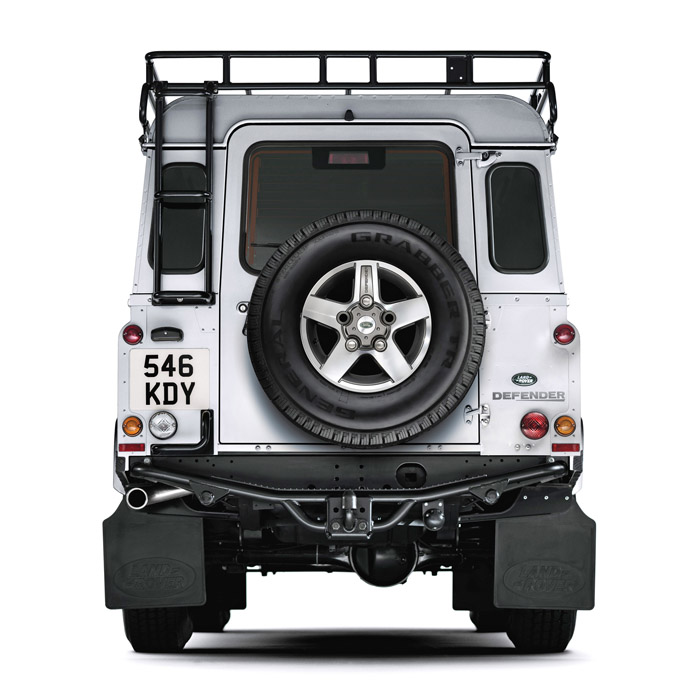 ACCESS LADDER TWO PIECE DEFENDER 90/110