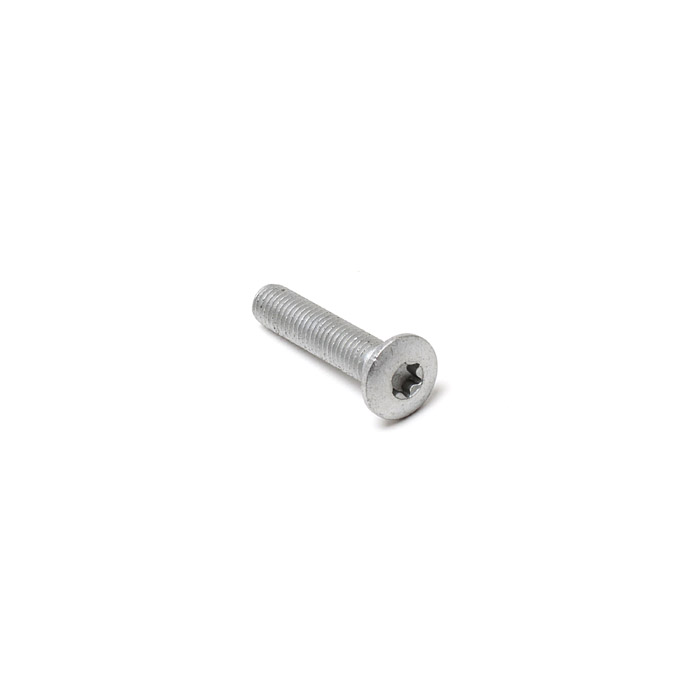 TORX BOLT M8 x 40mm DOOR HINGE-POST DEF