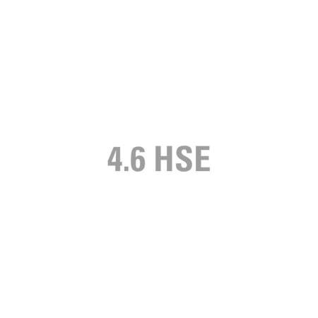 "DECAL - ""4.6 HSE"" RANGE ROVER P38A"